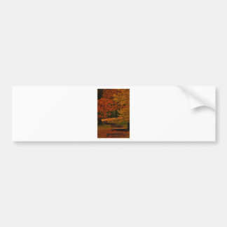 fALL STAIRWAY Bumper Sticker