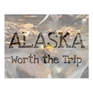 Fall Stream; Alaska Souvenir Postcard