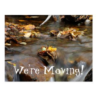 Fall Stream Postcard