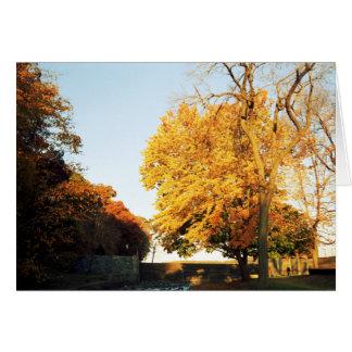 Fall Sunset Card