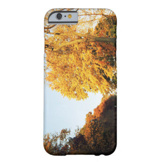 Fall Sunset Barely There iPhone 6 Case