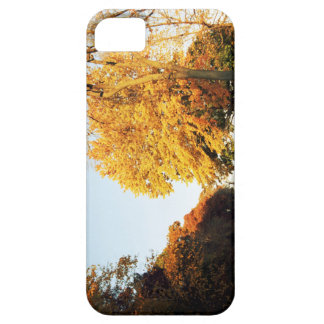 Fall Sunset Case-Mate iPhone 5 Case