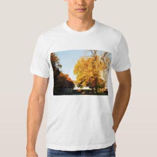 Fall Sunset Men's T-Shirt