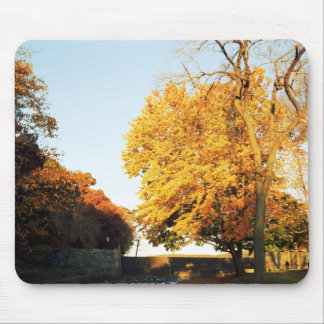 Fall Sunset Mouse Pad
