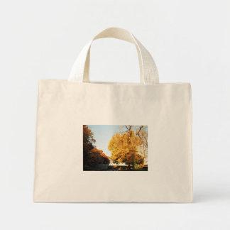 Fall Sunset Tote Bag Mini Tote Bag