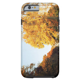 Fall Sunset Tough iPhone 6 Case