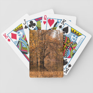Fall Swamp Landscape Bicycle Playing Cards