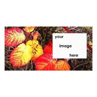 Fall Thankgsiving Halloween Leaves Photo Card