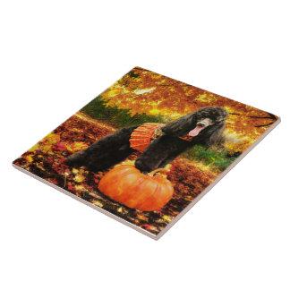 Fall Thanksgiving - Gidget - Poodle Tile