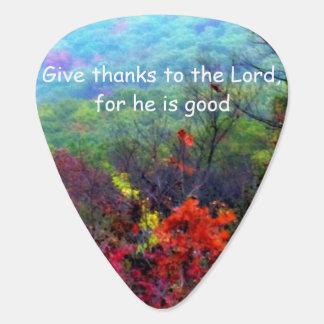 Fall Thanksgiving Guitar Pick