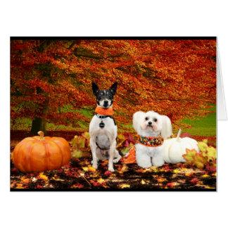 Fall Thanksgiving - Monty Fox Terrier & Milly Malt Card