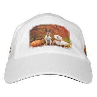 Fall Thanksgiving - Monty Fox Terrier & Milly Malt Hat