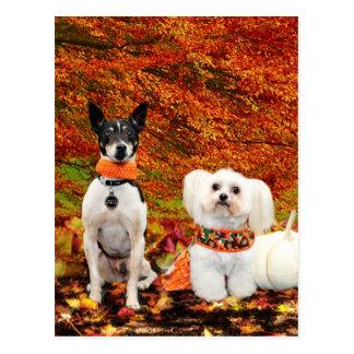 Fall Thanksgiving - Monty Fox Terrier & Milly Malt Postcard