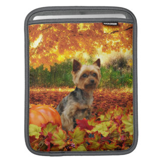 Fall Thanksgiving - Tucker - Yorkie Sleeve For iPads