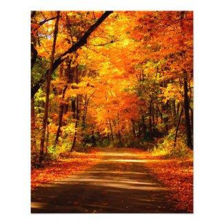 fall trail photo photoenlargement