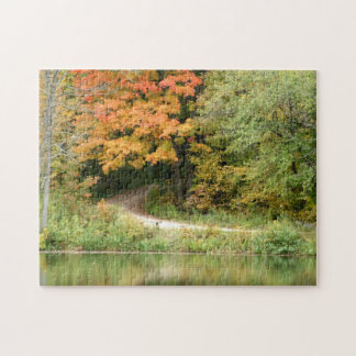 fall trail puzzle