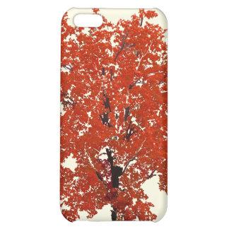 Fall Tree Case iPhone 5C Case