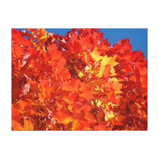 Fall Tree Leaves Canvas prints Orange Autumn