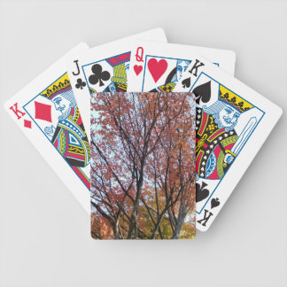 Fall Tree Playing Cards