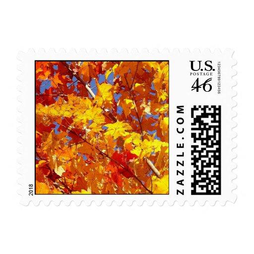 Fall Tree Postage Stamp