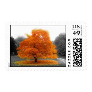Fall Tree Postage Stamps