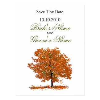 Fall Tree Save The Date postcard. Postcard