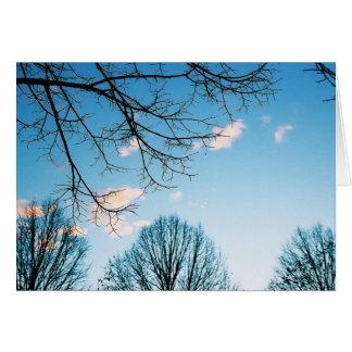 Fall Tree Skyline Card