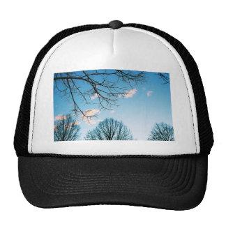 Fall Tree Skyline Trucker Hat