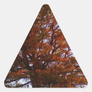 Fall Tree Triangle Sticker