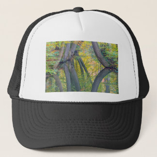 Fall tree trunks with reflection in dutch forest trucker hat