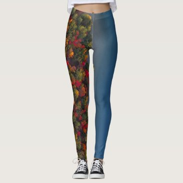 Fall Trees Along the Coast Leggins Leggings