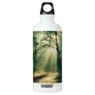 Fall Trees Aluminum Water Bottle