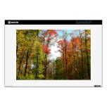 "Fall Trees and Blue Sky Autumn Nature Photography 13"" Laptop Skin"