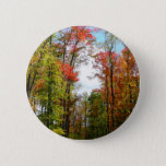 Fall Trees and Blue Sky Autumn Nature Photography Button