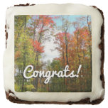 Fall Trees and Blue Sky Autumn Nature Photography Chocolate Brownie
