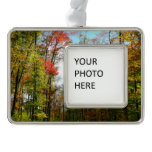 Fall Trees and Blue Sky Autumn Nature Photography Christmas Ornament
