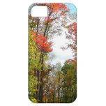 Fall Trees and Blue Sky Autumn Nature Photography iPhone SE/5/5s Case