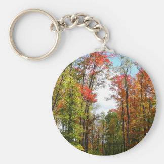 Fall Trees and Blue Sky Autumn Nature Photography Keychain