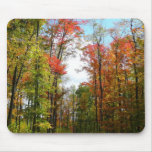 Fall Trees and Blue Sky Autumn Nature Photography Mouse Pad