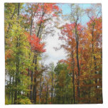 Fall Trees and Blue Sky Autumn Nature Photography Napkin