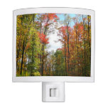 Fall Trees and Blue Sky Autumn Nature Photography Night Light