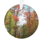 Fall Trees and Blue Sky Autumn Nature Photography Ornament