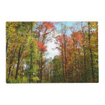 Fall Trees and Blue Sky Autumn Nature Photography Placemat