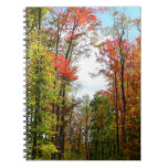 Fall Trees and Blue Sky Autumn Nature Photography Spiral Notebook