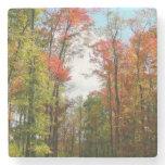 Fall Trees and Blue Sky Autumn Nature Photography Stone Coaster