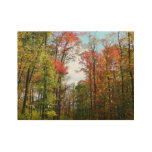 Fall Trees and Blue Sky Autumn Nature Photography Wood Poster