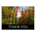 Fall Trees and Blue Sky Thank You Card (Blank Insi