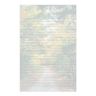Fall Trees Backroad Seasonal Stationery