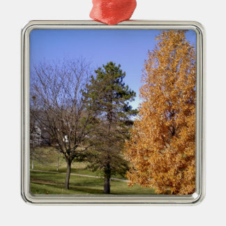 Fall Trees Metal Ornament