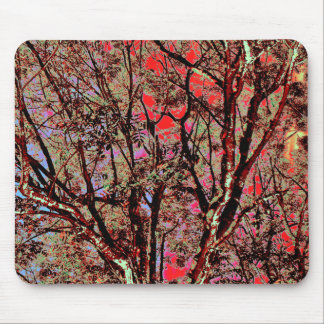 FALL TREES MOUSE PAD